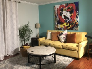 Furnished 1 br apt for rent in Uptown Charlotte (Fourth...